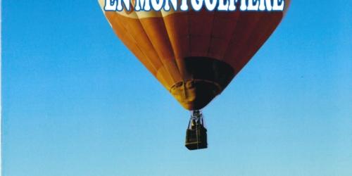 Les montgolfières de Vendée