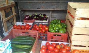 Vente de légumes et plants issus d'une exploitation maraichère certifiée AB – Graine d'ID