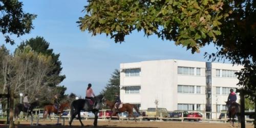 Centre Equestre Les Etablières